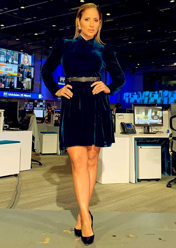 Image of Jackie Guerrdio is one of the attractive TV presenters in America TV.
